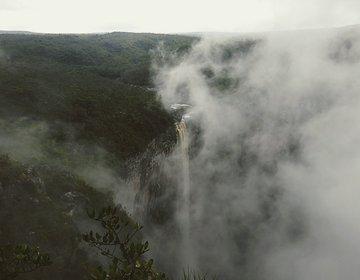 Em busca da maior cachoeira do Brasil no meio da Amazônia