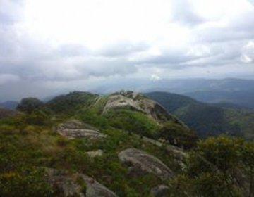 Pico Selado