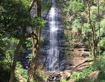 Cachoeira véu da noiva - Ortigueira PR