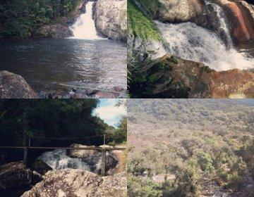 Trekking Serra do Mar Curitiba x Morretes