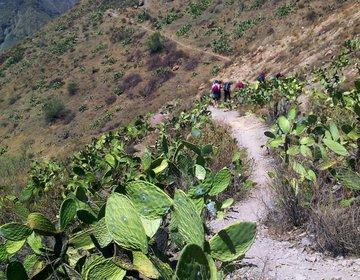 Cânion del Colca - Peru