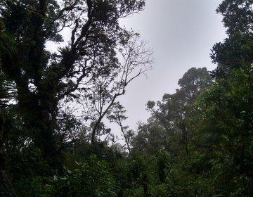 Circuito Pico Do Garrafão