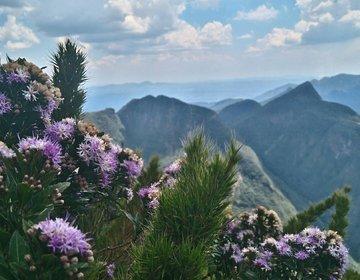 Hike Pico Paraná