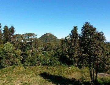 Pico da Onça e Travessia SFX Monte Verde [Trilha do Jorge]