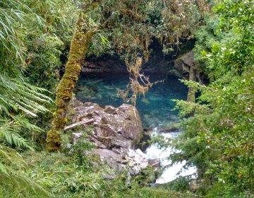 Trekking Parque Nacional Puyehue