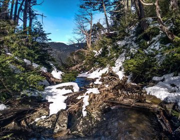 Trekking Los Lagos - Parque Nacional Huerquehue (inverno)