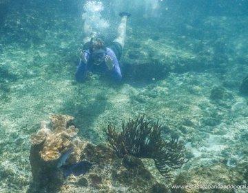 Curaçao - Snorkeling Fácil