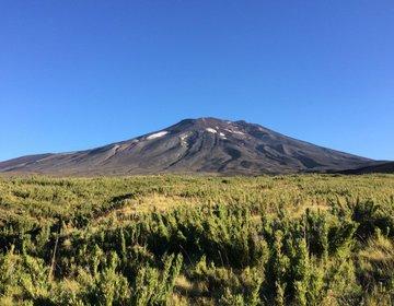 Terra de Vulcões - Lonquimay, Patagônia Chilena