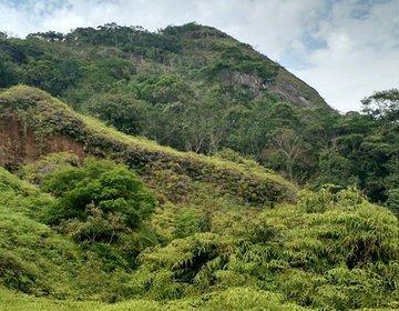 Morro da Cruz (Escalvado)