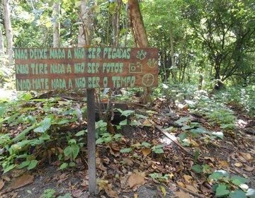 Trekking no Parque Zoobotânico Arruda Câmara - Bica