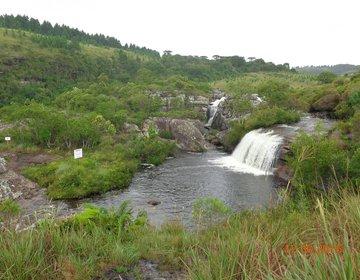 Parque Nacional dos Campos Gerais (PR) - Dez/15