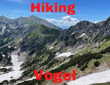 Hiking na montanha Vogel