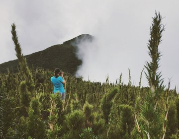 Trilha Pico Itapiroca, Antonina | Campina Grande do Sul - PR