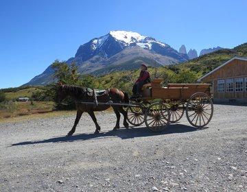 Torres del Paine circuito Completo (O) - Jan 2015