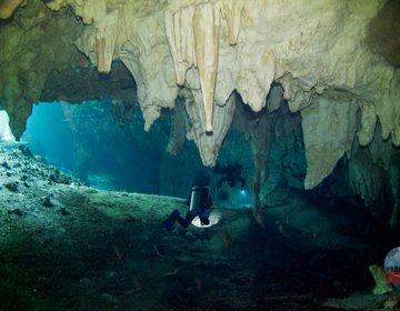 Os Cenotes de Tulum - México