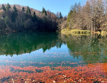 Natural Park Plitvice Lakes - C and 1-3 Trail to P3
