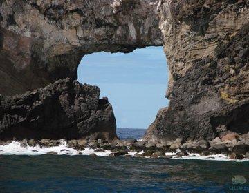 Fernando de Noronha o Paraíso no Mar e na Terra