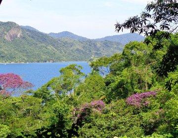 Saco do Mamangua - Pouso de Cajaiba