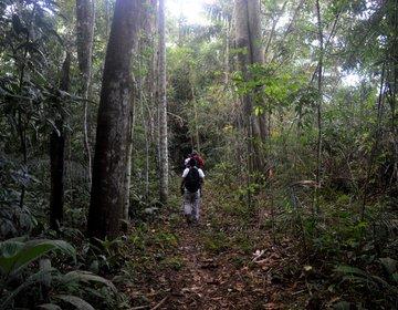 Trilhas pela Amazônia Peruana