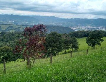 Voluntariando En Minas Gerais Brasil