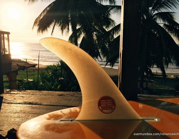 Classic Longboard Surf Trip   La Saladitas - Mexico