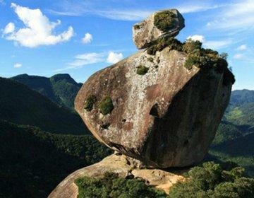 Pico Peito de Pombo