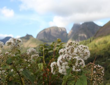 Branca de Neve - Parque Estadual dos Três Picos