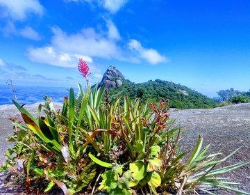 Pedra Das Flores E Pico Do Lopo