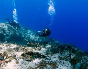 Mergulhando em Cozumel