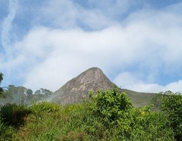 Guia - Alcobaça